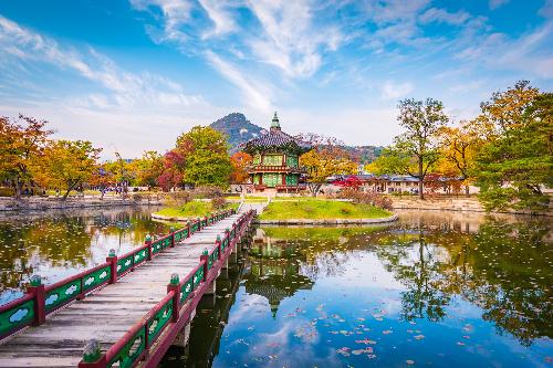 Du khách cũng có thể lựa chọn đảo Jeju tràn ngập nắng và gió. Từ đỉnh Seongsan nhìn xuống, bạn sẽ chìm đắm trong những thung lũng với thành đá uốn lượn, thảm cỏ xanh mượt, tán lá ngả màu vàng óng và bãi cỏ lau trổ bông trắng muốt.Ngoài ra, bạn nên bổ sung trong lịch trình của mình bằng việc tham quan Vườn Quốc gia Daesang. Những con đường bạt ngàn sắc lá vàng xen lẫn hai thác nước Dodeok và Geumseon dễ khiến bạn nao lòng.