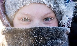 Cuộc sống ở những nơi lạnh nhất hành tinh