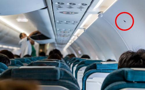 Vị trí hình tam giác nhỏ màu đen trong khoang máy bay. Ảnh: TravelAndLeisure.