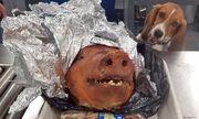 Hải quan Mỹ phát hiện hành khách giấu đầu heo quay trong vali