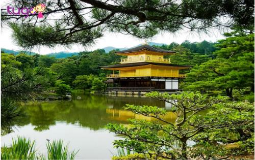 Đền Vàng Kinkakuji, biểu tượng của Kyoto. Ảnh: Tugo.