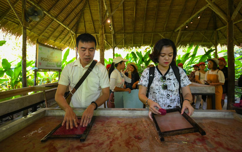Nơi du khách tự tay làm giấy từ phân voi ở Thái Lan