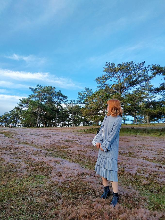Mùa cỏ hồng đẹp như trời Âu ở Đà Lạt