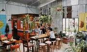 Quán cà phê đưa cả vườn vào trong nhà ở Đà Lạt