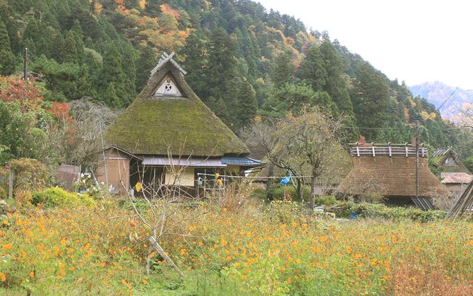 Ngôi làng đẹp như cổ tích nhưng chưa nhiều người biết ở Nhật