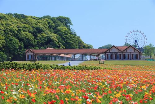 Khu công viên, vườn thú mở năm 2001 ở Chiba. Ảnh: Fast Japan.