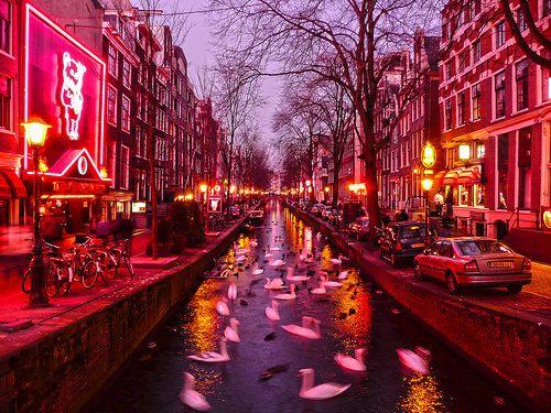 Phố đèn đỏ Amsterdam. Ảnh: Pinterest.