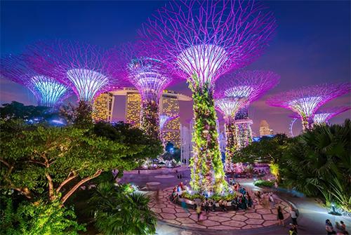 Gardens by the Bay(có nghĩa là những khu vườn bên vịnh) chính thức mở cửa ngày 29/6/2012. Đây là khu vườn nhân tạo rộng hơn 100ha, có hơn 250.000 loài thực vật quý hiếm, với các siêu câykhổng lồ lấy năng lượng mặt trời vào ban ngày và tự tỏa sáng vào ban đêm. Từ đây, khách tham quan có thể chụp hình toàn cảnh chiếc du thuyền nằm ở độ cao 200m trên đỉnh của ba tòa tháp khách sạnMarina Bay Sands.
