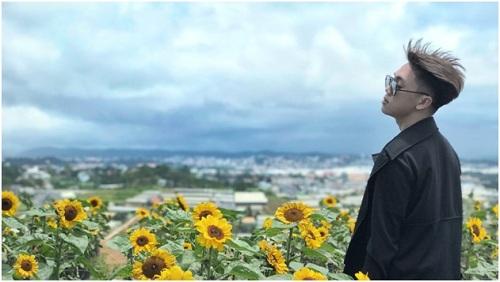 Hướng dương được trồng ở nhiều nhà vườn, thậm chí một trang trại ở ngoại thành Đà Lạt chỉ trồng loài hoa này. Ảnh: Kendang.