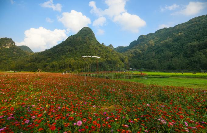Thung lũng hoa Bắc Sơn nằm tại xã Trấn Yên, huyện Bắc Sơn, Lạng Sơn. Khu vực này mở cửa đón du khách tham quan từ 15/10/2017 với gần 10 loại hoa được trồng tại đây.