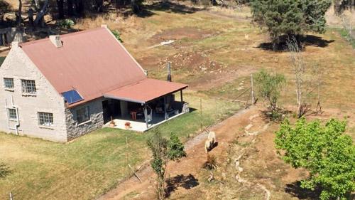 Lion House nằm giữa khu bảo tồn GG, xung quanh là hàng rào điện. Ảnh: Sun.