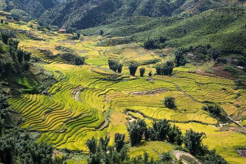 Sa Pa trong top 10 điểm đến hấp dẫn nhất Đông Nam Á