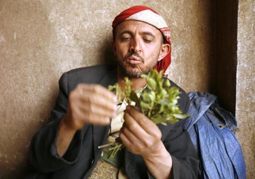 Những người đàn ông Yemen tiêu nhiều tiền cho lá khát hơn mua sắm trong gia đình: đôi khi tới 800 USD một tháng. Ảnh: Reuters.
