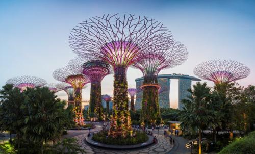 Du khách có thể khám phá Singapore trong lúc nối chuyến.