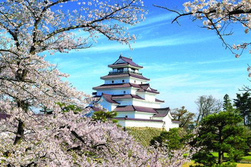 Thành Hạc trắng Tsurugajo: với gần 1,000 gốc cây anh đào, mỗi mùa xuân đến tòa thành như lạc giữa biển hoa hòa quyện với vẻ đẹp kiêu sa của màu tường trắng muốt và mái ngói đỏ tươi.