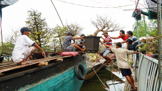 Khách Tây cùng người dân đi chợ hoa trên sông lớn nhất Sài Gòn