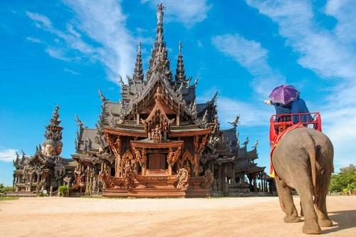 Nằm trên đường Sukhimvit, quận Nong Prue, phía đông thành phố Pattaya,làng voi Pattayamở cửa từ năm 1973 và được coi là một khu bảo tồn cho những chú voi già yếu không thể làm việc. Khi tới đây, du khách sẽ được quan sát,trải nghiệm các hoạt động huấn luyện voi, tắm voi, diễu hành voi. Bạn cũng có thểthửcảm giác thú vị và hồi hộp khi ngồi trên lưng voi dạo quanh ngắm cảnh.