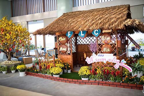 Tết Kỷ Hợi 2019, hệ thống quần thể nghỉ dưỡng của Tập đoàn FLC tại Vĩnh Phúc, Sầm Sơn, Quy Nhơn và Hạ Long đón hàng vạn lượt khách tham quan, nghỉ dưỡng. Không khí đặc trưng của ngày Tết cổ truyền hiện diện từ rất sớm với những cành đào, mai khoe sắc.
