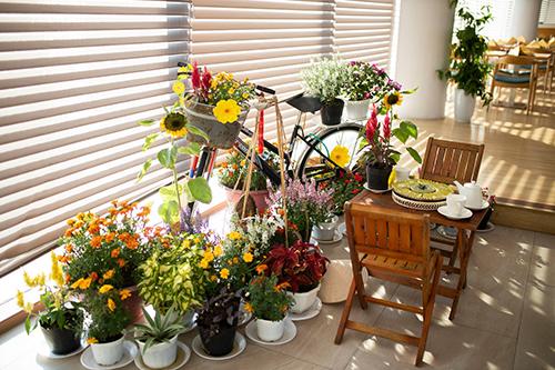 Sắc xuân tràn ngập từ khu vực tiền sảnh rộng rãi đến mọi góc của quần thể với những thiết kếxinh xắn, từ mâm ngũ quả, câu đối đỏ cho tới những giò hoa rực rỡ, tươi tắn.