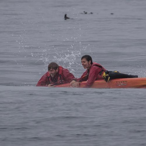 Một thuyền chở du khách chớp được khoảnh khắc Tom và Charlotte ngoi khỏi mặt nước, bám ngay vào thuyền kayak sau cú va chạm. Ảnh:Sanctuary Cruises.