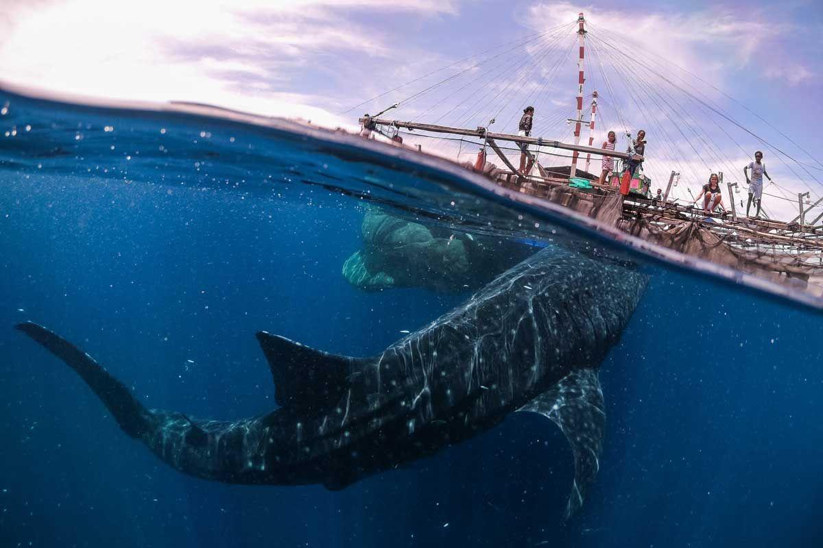 Biển Phú Yên vào top ảnh du lịch đẹp nhất thế giới