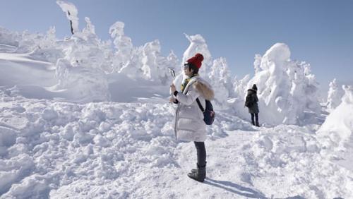 Những cái cây đóng băng với dáng vẻ hấp dẫn này, được mệnh danh là quái vật tuyết.