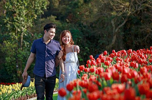 Nhiều du khách thích thú ngắm nhìn vườn hoa.