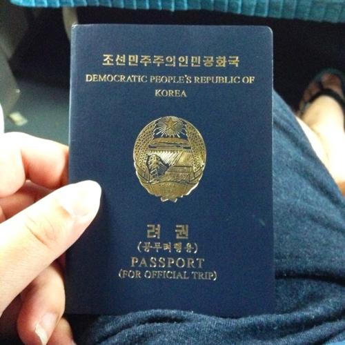 Tấm hộ chiếu Mike được xem. Ảnh:Irresponsible Life.
