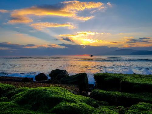 Vẻ đẹp của bãi rêu thay đổi vào từng thời điểm trong ngày, tùy thuộc vào lúc bạn đến chiêm ngưỡng nó vào buổi sáng hay chiều. Sáng sớm khi nước biển dâng cao, những lớp rêu xanh ẩn hiện trong từng lớp sóng trắng xóa. Những sợi rêu bồng bềnh trong nước thật mềm mại và uyển chuyển. Rêu uốn mình, chuyển động theo sự di chuyển của những con sóng.