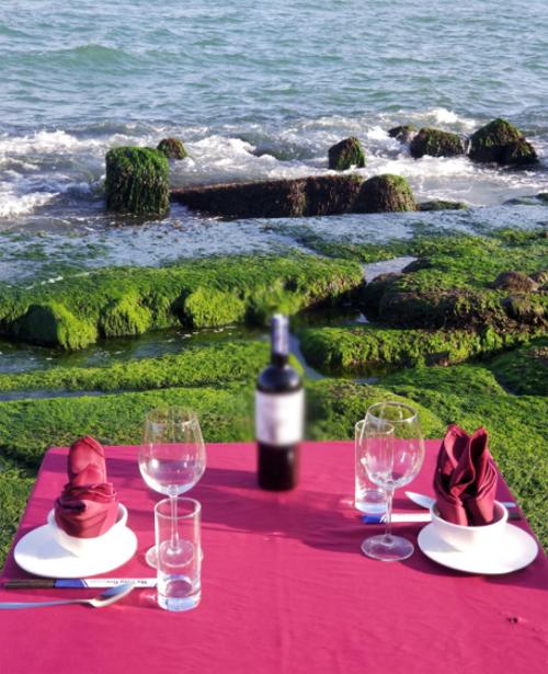 Bạn có thể chọn cho mình một chỗ ngồi lý tưởng ngay tại nhà hàng để có thể vừa ngắm toàn cảnh bãi rêu xanh và vịnh Nha Trang thơ mộng.