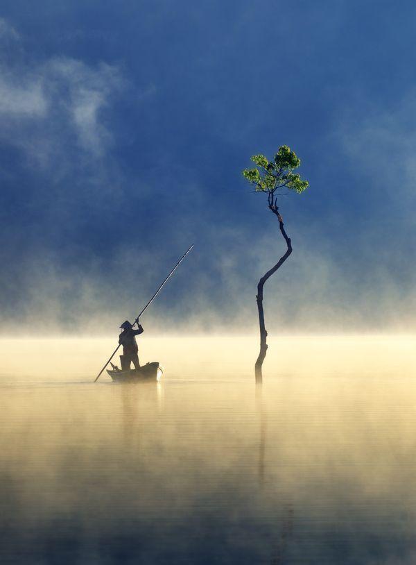 Sương giăng trên hồ Tuyền Lâm vào top ảnh đẹp trên báo Mỹ Bức ảnh Sương giăng trên hồ Tuyền Lâm vào top ảnh đẹp trên báo Mỹ