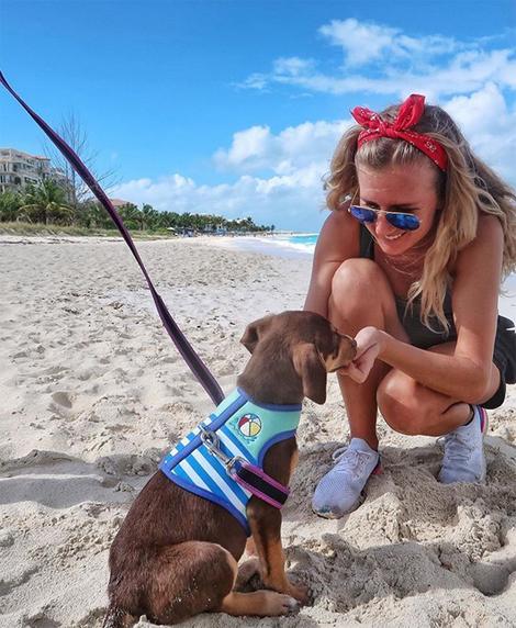 Những chú cún bị bỏ rơi cần có sự quan tâm, chăm sóc trước khi về nhà mới. Ảnh: Instagram.