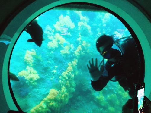 Tàu ngầm khám phá đại dương Seogwipo có thể lặn sâu tối đa 57m, sẽ đưa bạn xuống sâu 40m dưới đáy biển đảo Munseom để chiêm ngưỡng những rặng san hô rực rỡ màu sắc.