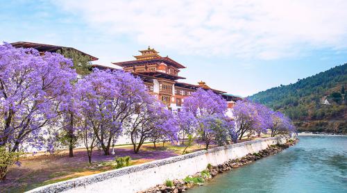Là một vương quốc nhỏ nằm giữa Ấn Độ và Trung Quốc, nếu ai đã từng một lần đặt chân tới Bhutan thường vương vấn khó nguôi, bởi cảnh đẹp thanh bình với những con người, thân thiện, bình dị. Nếu muốn đến đây, hành khách bắt buộc phải đi theo tour vì Bhutan không cho phép du lịch tự túc.   Tour bay charter máy bay thuê bao nguyên chuyến là hình thức duy nhất để bay thẳng đến đây, nếu không muốn phải quá cảnh thêm 6 tiếng tại Thái Lan.