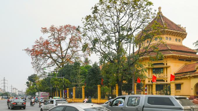 Những mùa hoa gọi tên tháng 3 ở Hà Nội