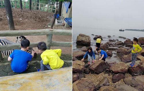 Lũ trẻ đều rất háo hức khám phá mọi thứ xung quanh nơi mình đến tham quan. Ảnh: NVCC.