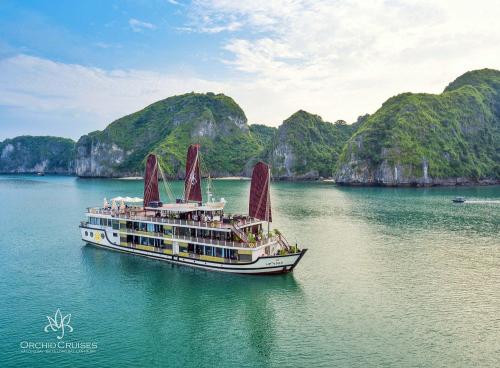 Pelican Group là công ty du lịch đang quản lý 5 thương hiệu du thuyền sang trọng tại Vịnh Hạ Long.