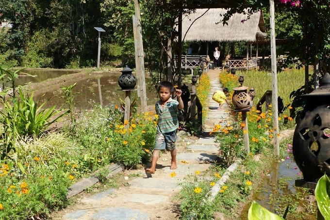 Hồ Lắk vào top điểm cắm trại sang chảnh ở Đông Nam Á