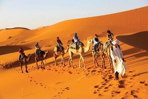 Cưỡi lạc đà trong sa mạc là trải nghiệm gây nhiều ấn tượng với du khách.