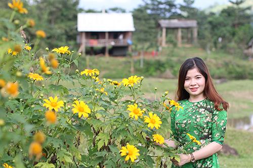 Hoa dã quỳ mọc dại ở miền tây Quảng Trị thường hút khách du lịch mỗi mùa nở rộ. Ảnh: Quang Hà