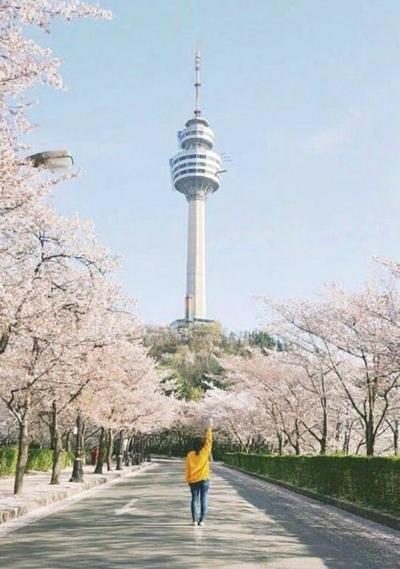 Bí kíp tham quan tháp Namsan ở Hàn Quốc - ảnh 1