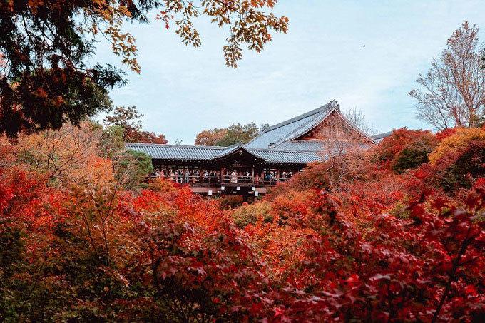 Cố đô Kyoto vừa bình yên vừa nhộn nhịp dịp cuối tuần