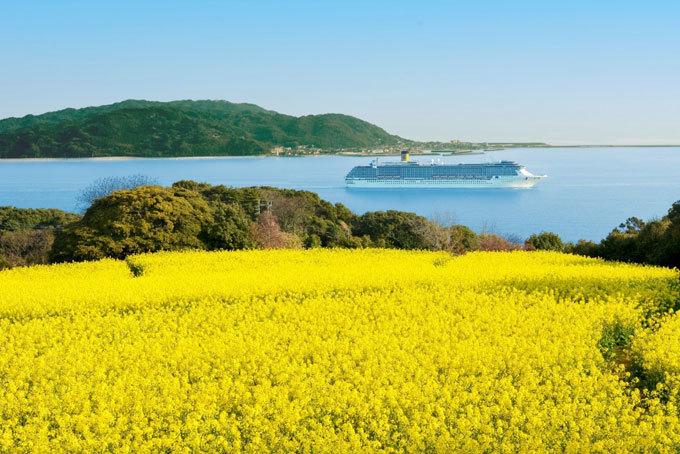 Đảo Nokonoshima - địa điểm du lịch mới ở Nhật Bản