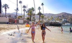 Cách người Mỹ tận hưởng mùa hè sôi động