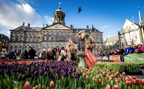 Ngày hội hoa Tulip được tổ chức ở quảng trường Dam, thủ đô Amsterdam vào ngày thứ 7 thứ 3 trong tháng Một. Ảnh: Heavenly Holland.