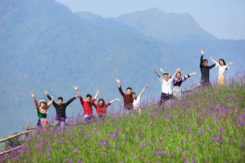Đỗ quyên trăm tuổi nở rộ ở đỉnh núi Fansipan - ảnh 4