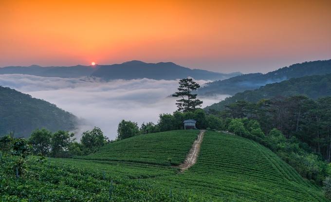 Những điểm ngắm sương vờn mây lúc bình minh ở Đà Lạt