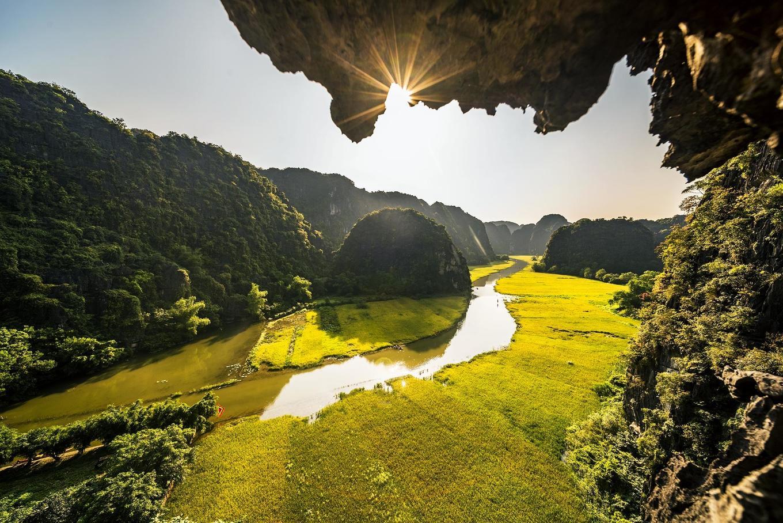 Cánh đồng lúa ở Tam Cốc vào mùa đẹp nhất trong năm