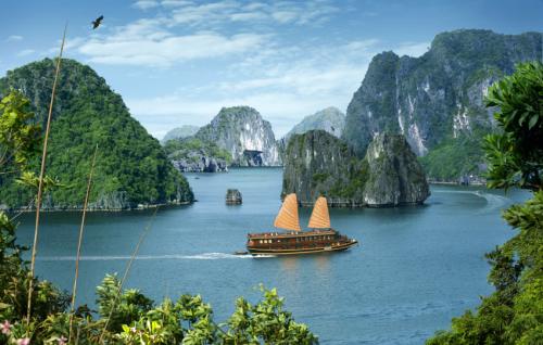 Tour du lịch miễn phí tại Hạ Long - ảnh 1