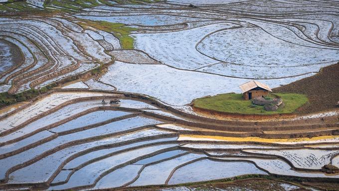Mùa nước đổ đẹp như tranh ở Lào Cai